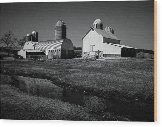 Wood Print featuring the photograph Classic Wisconsin Farm by Viviana  Nadowski
