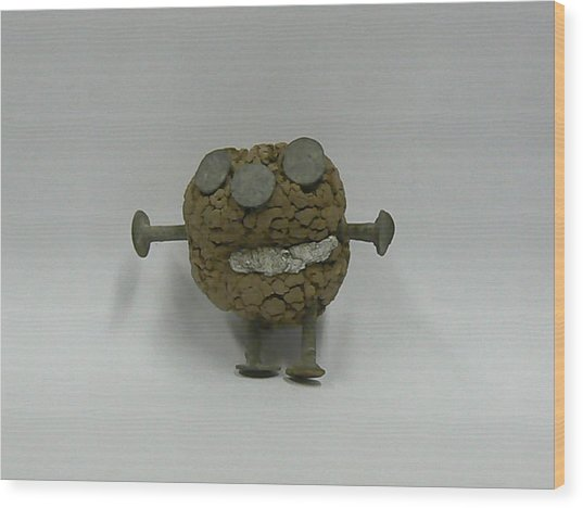 Clayman Wood Print by Ron Hayes