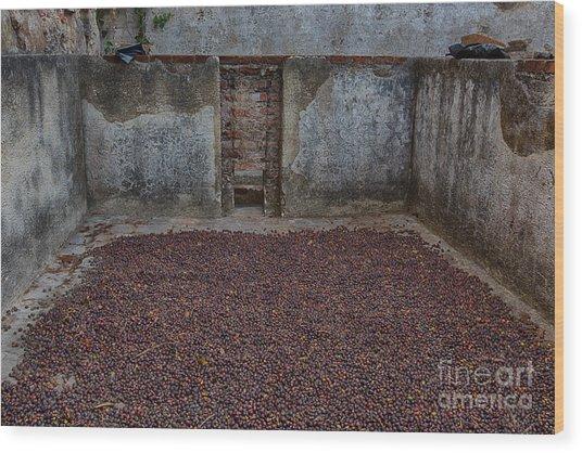 Clean Coffee Wood Print