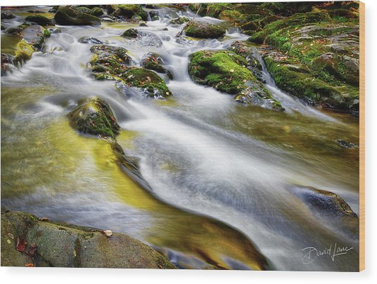 Wood Print featuring the photograph Clear Mountain Water  by David A Lane