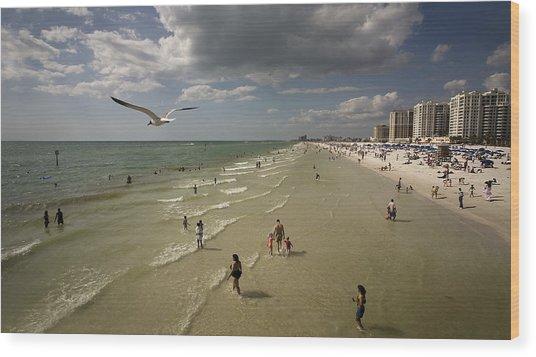 Clear Water Beach Wood Print by Patrick Ziegler