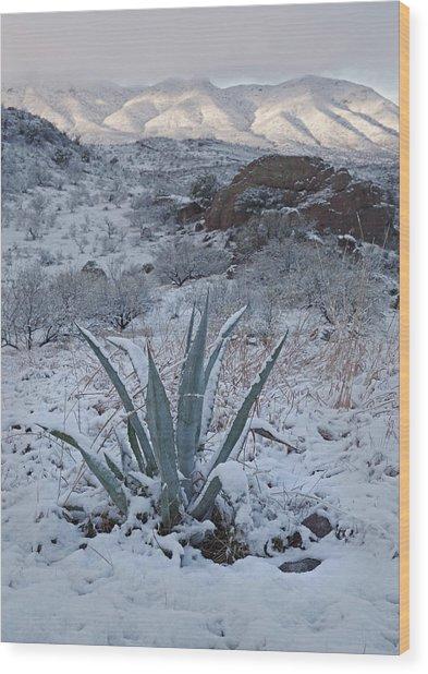 Clearing Desert Snowstorm Wood Print