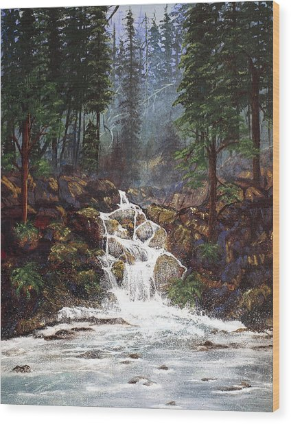 Clearwater Falls Wood Print