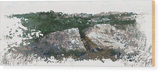 Cleft Rock Wood Print by Ronald Rosenberg
