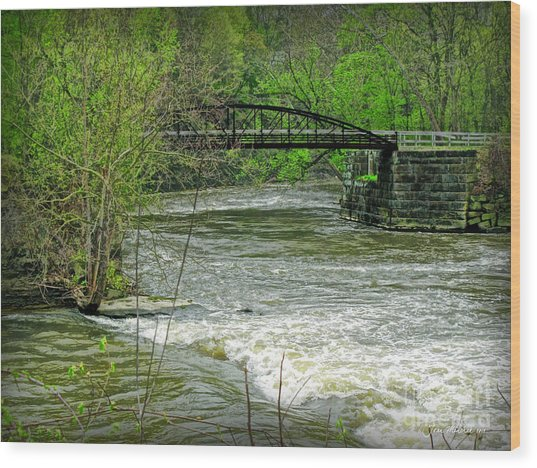 Cleveland Metropark Bridge Wood Print