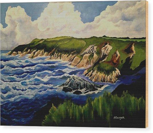 Cliffs And Sea Wood Print