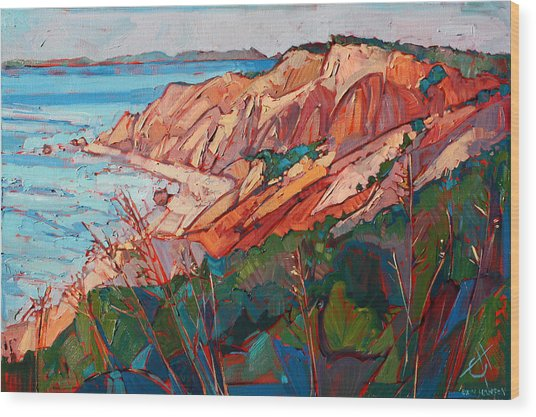 Cliffs In Color Wood Print