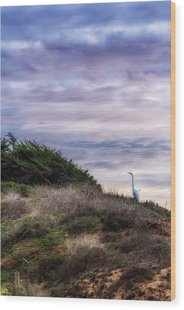 Cliffside Watcher Wood Print