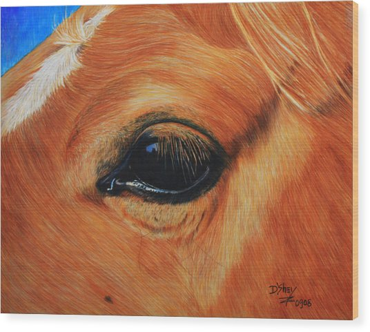Close Up Of A Horse Wood Print by Don MacCarthy