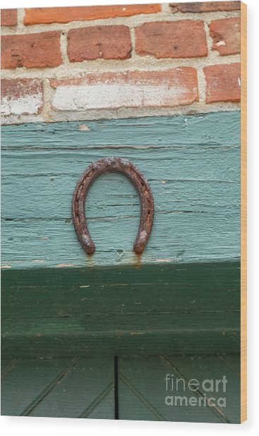 Close Up Of Rusty Horseshoe Wood Print