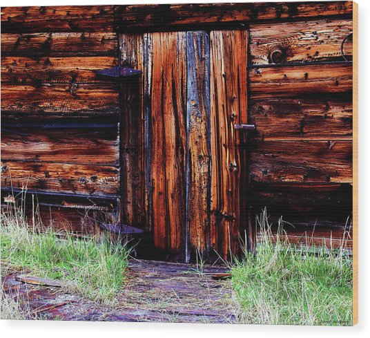 Closed And Forgotten Wood Print