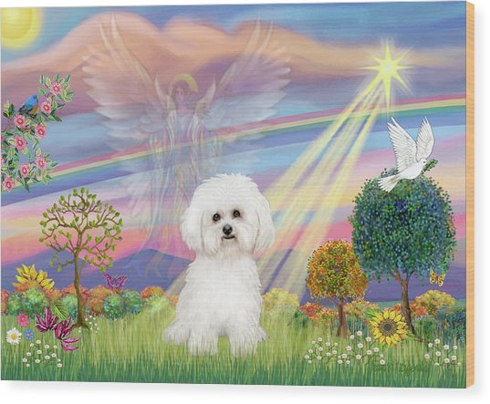 Cloud Angel And Bichon Frise Wood Print