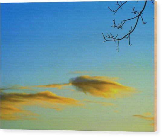 Cloud Heron Wood Print
