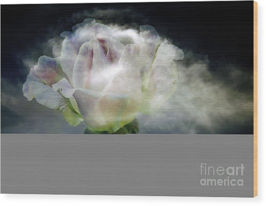 Cloud Rose Wood Print