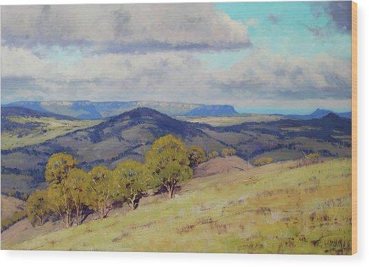 Cloud Shadows Over The Kanimbla Valley Wood Print