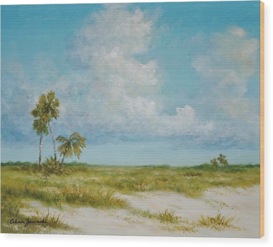 Clouds And Palms By Alan Zawacki Wood Print