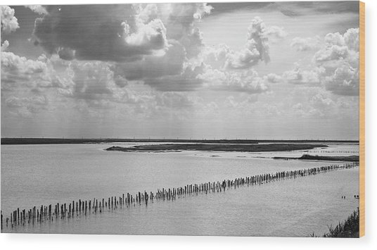 Wood Print featuring the photograph Clouds Over The Lake. Sivash, 2011. by Andriy Maykovskyi