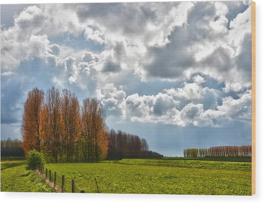 Clouds Over Voorne Wood Print