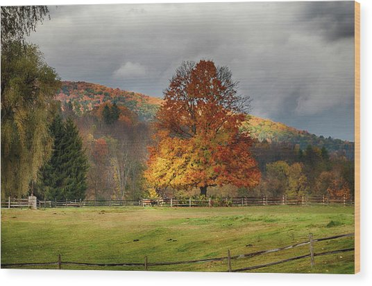 Clouds Part Over Marsh Billings-rockefeller Nhp Wood Print