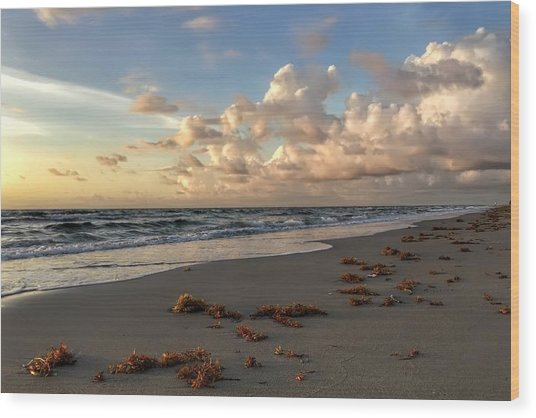 Cloudy Horizon  Wood Print