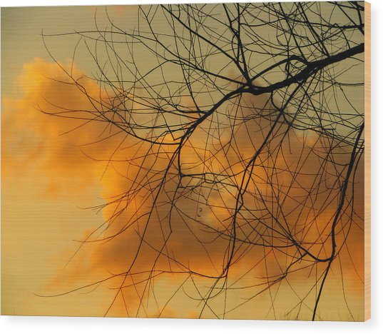 Cloudy Silhouette Wood Print by Dottie Dees