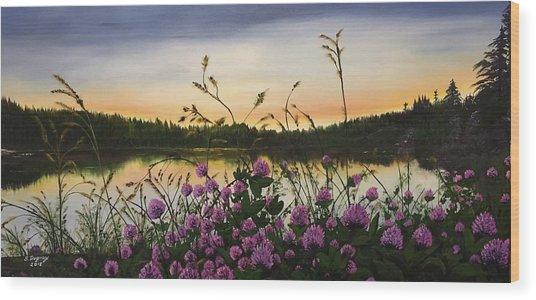 Clover Sunrise  Wood Print