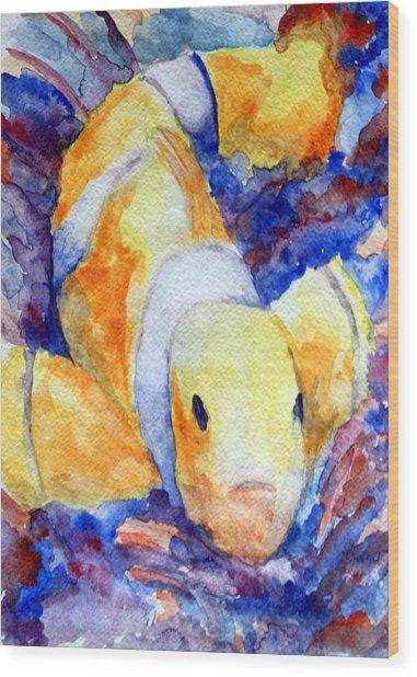 Clown Fish Wood Print by Mike Segura