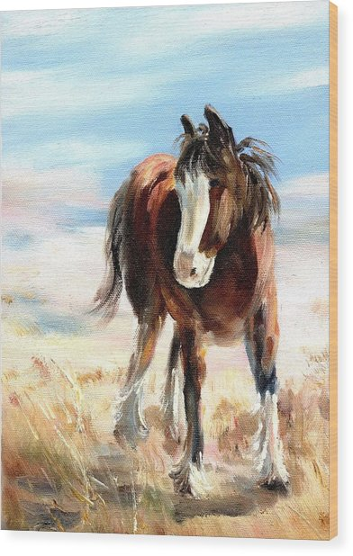 Clydesdale Foal Wood Print