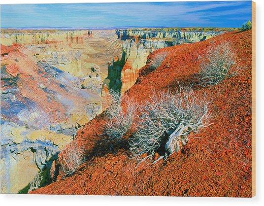 Coal Mine Canyon Wood Print