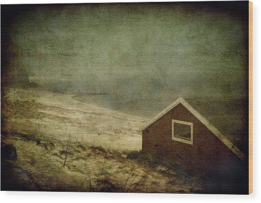 Coast Of Norway Wood Print