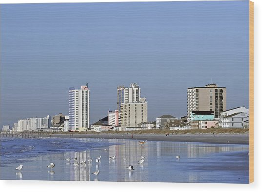 Coastal Architecture Wood Print