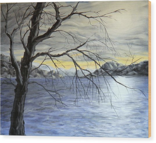 Coastal Evening Wood Print