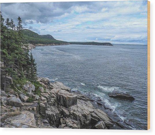 Coastal Landscape From Ocean Path Trail, Acadia National Park Wood Print