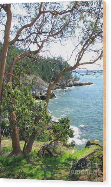 Coastal Shores Wood Print