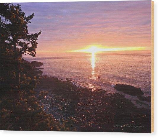 Coastal Sunrise Wood Print