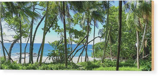 Coata Rica Beach 1 Wood Print
