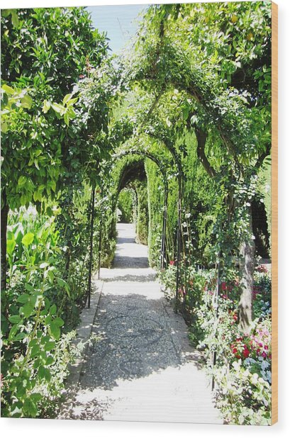Cobble Stone Garden Walkway In Spain Wood Print