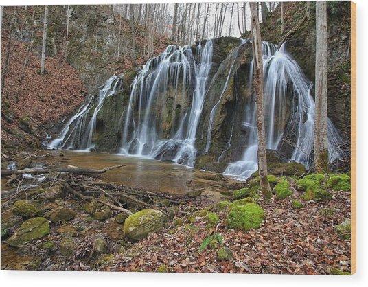 Cobweb Falls Wood Print