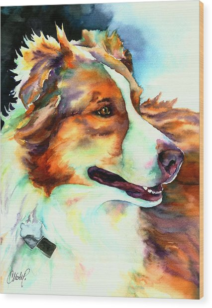 Cocoa Lassie Collie Dog Wood Print