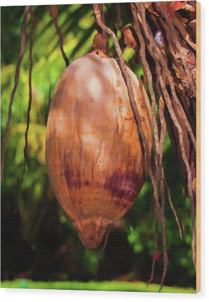 Coconut 2 Wood Print