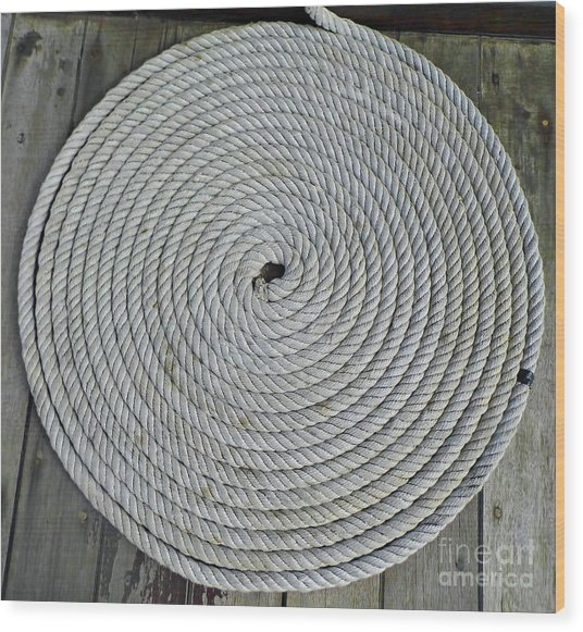 Coiled By D Hackett Wood Print