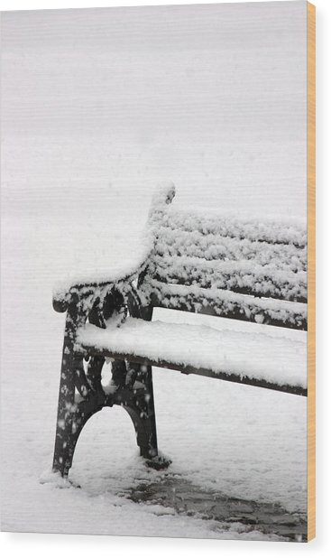 Cold Bench Wood Print by Jez C Self