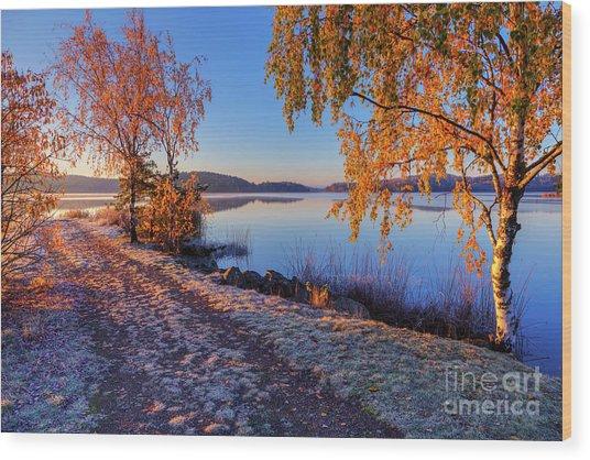 Cold Morning 2 Wood Print