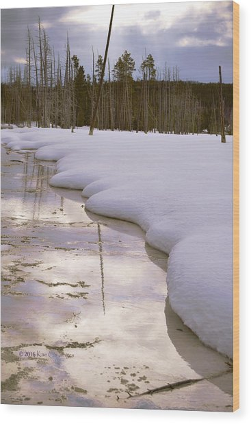 Cold Reflections Wood Print