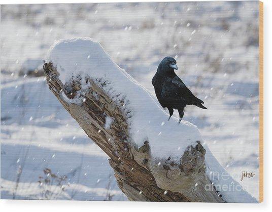 Cold Winter Wood Print