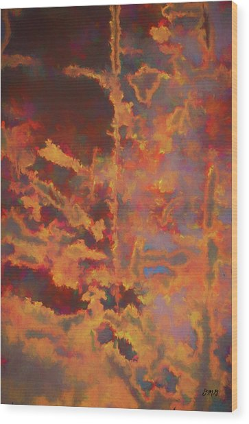 Color Abstraction Lxxi Wood Print
