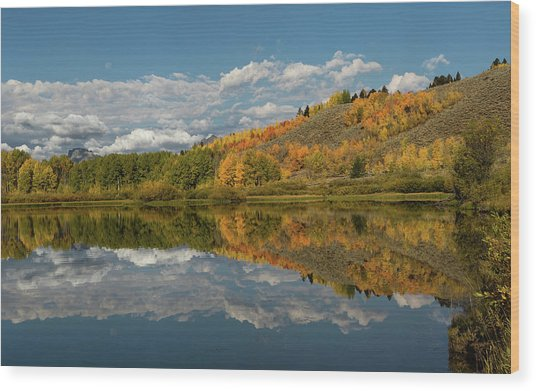 Color At Oxbow Bend Wood Print