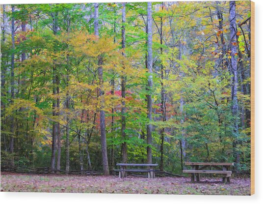 Color Benches Wood Print