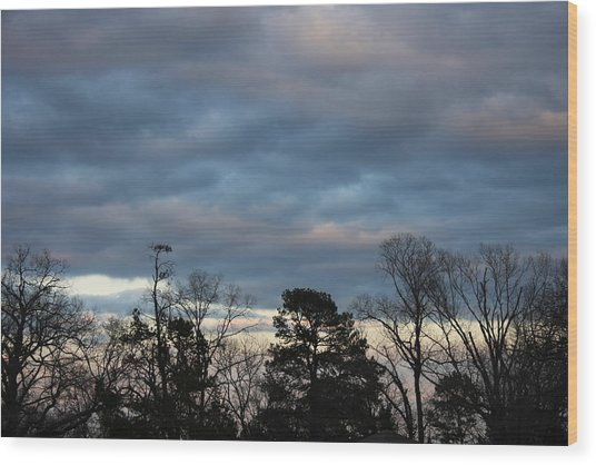 Color Of The Sky Wood Print by Lee Anderson