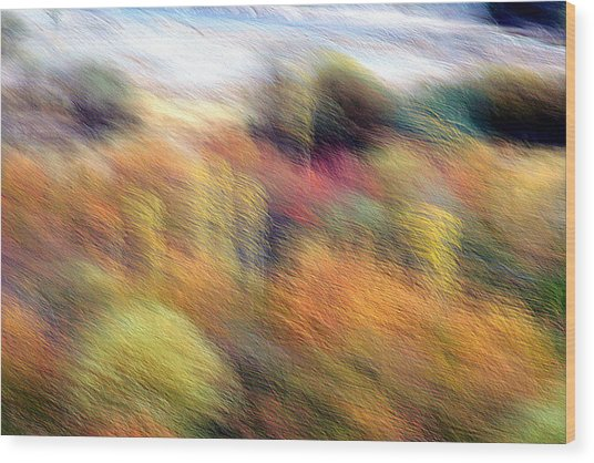Color Play Wood Print by Robert Shahbazi